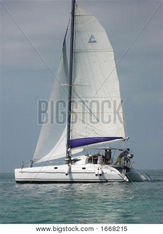 Sailing Ambergris Caye