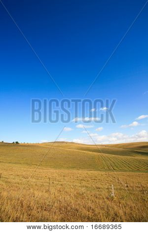 Autumn harvest under steppes in the blue sky