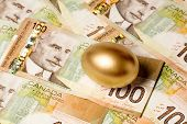 foto of priceless  - golden egg and canadian dollars concept of Making Money - JPG