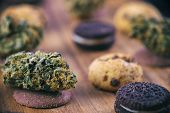 Background with cannabis nugs over infused chocolate chips cookies - medical marijuana edibles conce poster