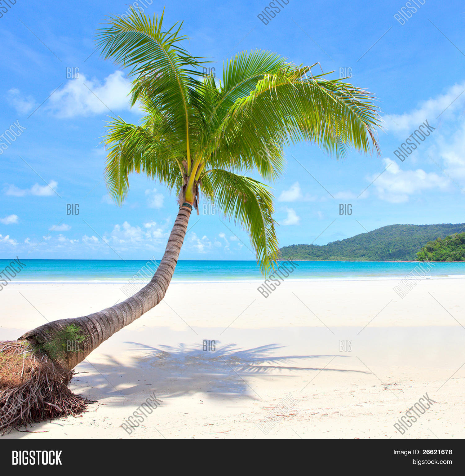 Beach Island: Beach Scene On Beautiful Island Image & Photo