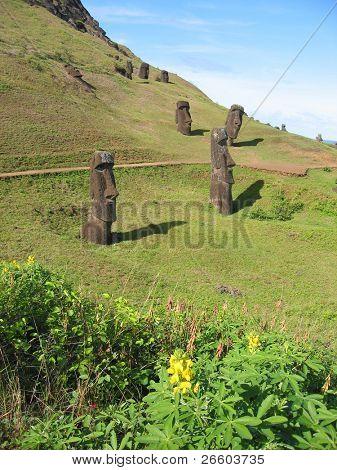 Moais on the slope of Rano Raraku volcano, Easter Island