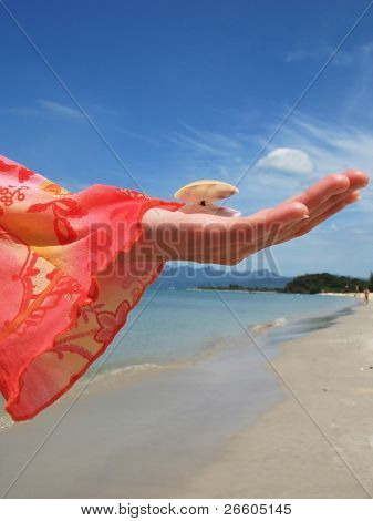 Woman holds a seashell against a sandy beach of Langkawi island, Malaysia