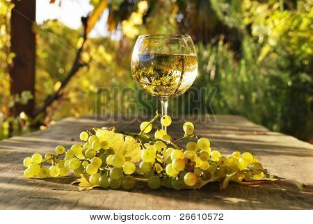 Glass of white wine and a bunch of grapes. Lavaux region, Switzerland