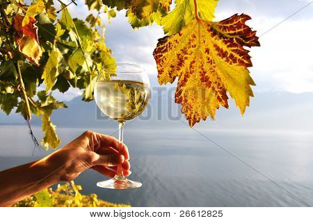 Wineglass in the hand against Geneva lake. Lavaux region, Switzerland