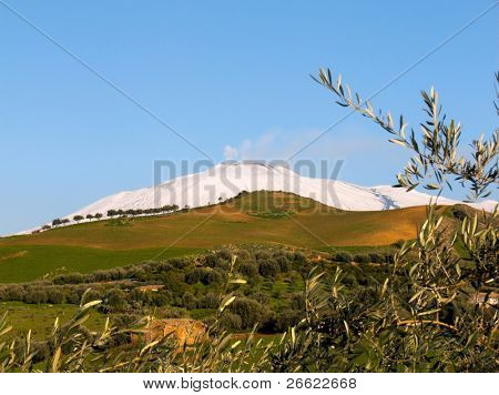 Country landscape with the volcano Etna snowy