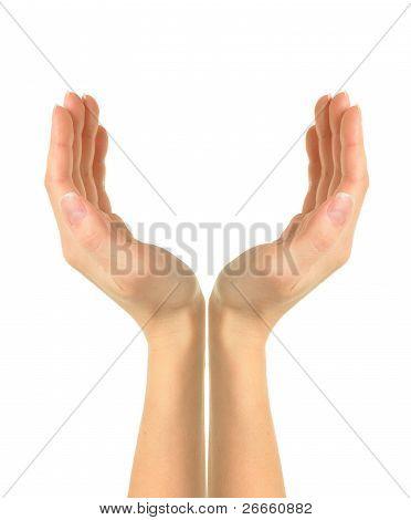 Empty Woman Hands.