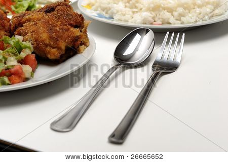 Chicken with rice, studio shot, food concept