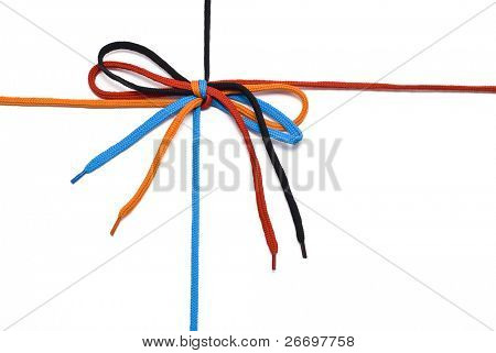 shoelace with bow