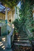 Ruined Mansion Interior Overgrown By Plants Overgrown By Ivy Spiral Staircase And Column. Nature And poster