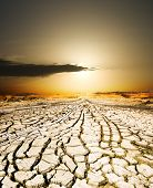 picture of drought  - sunset on the ground dried by dryness - JPG