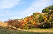 Art Of Nature. The Colors Of Autumn. Dunes In Deliblato Sands In Banat, Vojvodina, Serbia. Deliblato poster