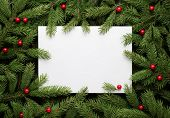 Christmas card background. Paper notice sheet with copy space for text.  Decorative frame of fir bra poster