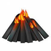 Burning Fire Icon. Realistic Illustration Of Burning Fire Icon For Web Design poster