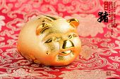 2019 is year of the pig,Golden piggy bank with red background,Chinese new year concept,calligraphy t poster