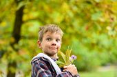 Bringing True Happiness. Happy Boy. Little Boy Spread Happiness. Little Child With Adorable Smile. E poster