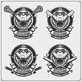 Cricket, Baseball, Lacrosse And Hockey Badges And Labels. Sport Club Emblems With Crocodiles. poster