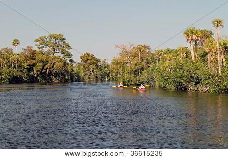Loxahatchee Kayakers