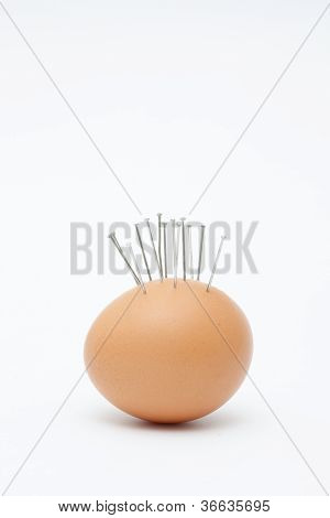 Egg with needles