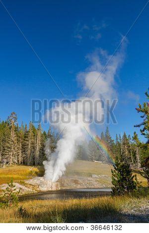 Riverside Geyser Erupting At Yellowstone National Park