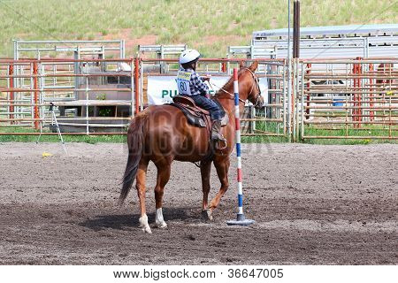 Little Britches Rodeo