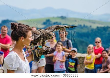 STARA LUBOVNA, SLOVAKIA - AUGUST 26: female falconer performs with her bird during Falconry Show in Stara Lubovna, August 26 2012, Stara Lubovna, Slovakia