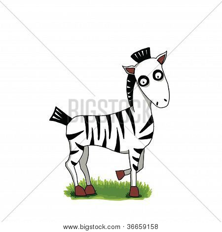 Vector funny cartoon zebra