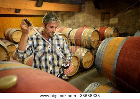 Winemaker getting sample of red wine from barrel