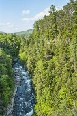 stock photo of woodstock  - Quechee Gorge from the bridge on Woodstock Road - JPG