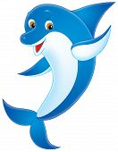 stock photo of cetacea  - Isolated clip - JPG