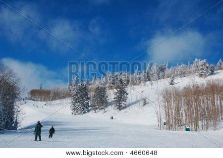 Ski In Deer Valley