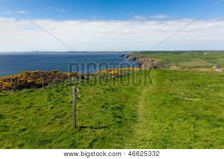 Haroldstone Chins from Pembrokeshire Coast Path St Bride's Bay Wales
