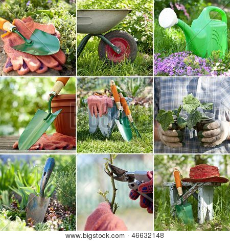 Composite Image Of Gardening Inspired Photos