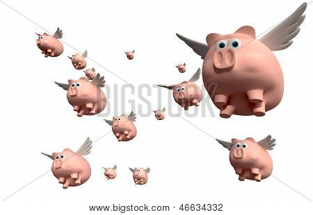 When Pigs Fly Group