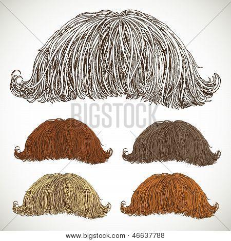 Lush Retro Mustache