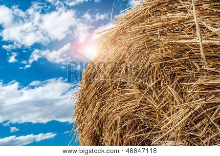 Sheaves Of Straw