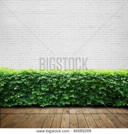 wood terrace background