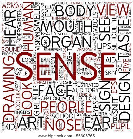 Word cloud - sense