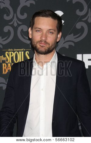 "LOS ANGELES - JAN 7:  Tobey Maguire at the IFC's ""The Spoils Of Babylon"" Screening at Directors Guild of America on January 7, 2014 in Los Angeles, CA"
