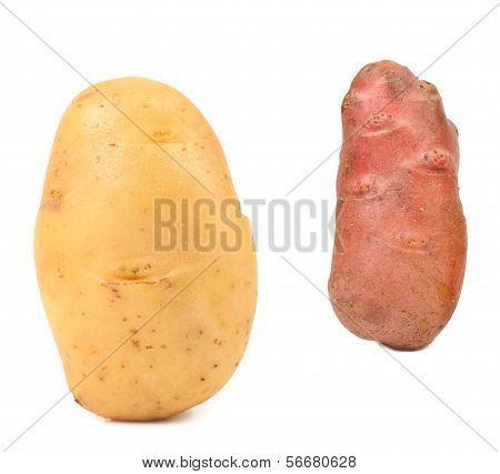 Two different fresh potatoes.