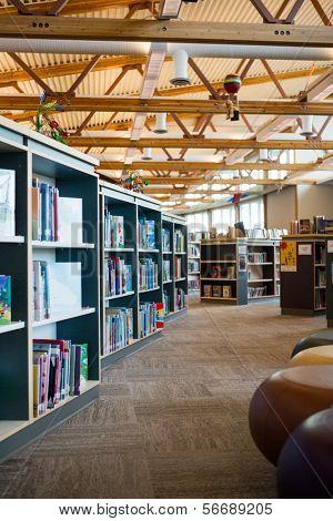 Books on bookshelves in library