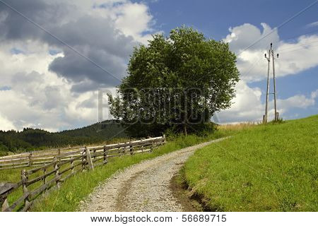 Meadow way  at summer time, Czech republic, mountains Beskydy