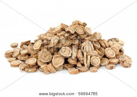 Astragalus root herb used in chinese herbal medicine over white background. Huang qi.