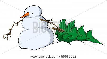 Snowman Spruce Dragging
