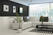 picture of dark side  - Black and white living room with comfortable couch - JPG