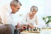 Постер, плакат: Портрет Пожилые супружеские пары в свободное время играл в шахматы