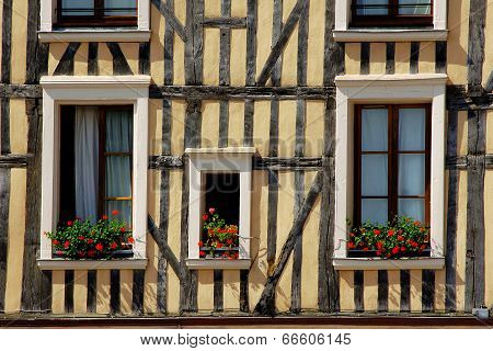 Windows decorated with flowers