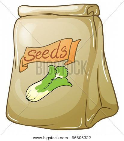 Illustration of a pack of vegetable seeds on a white background