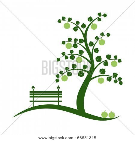 Apple tree isolated on white