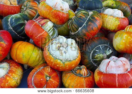 Many Different Acorn Squash